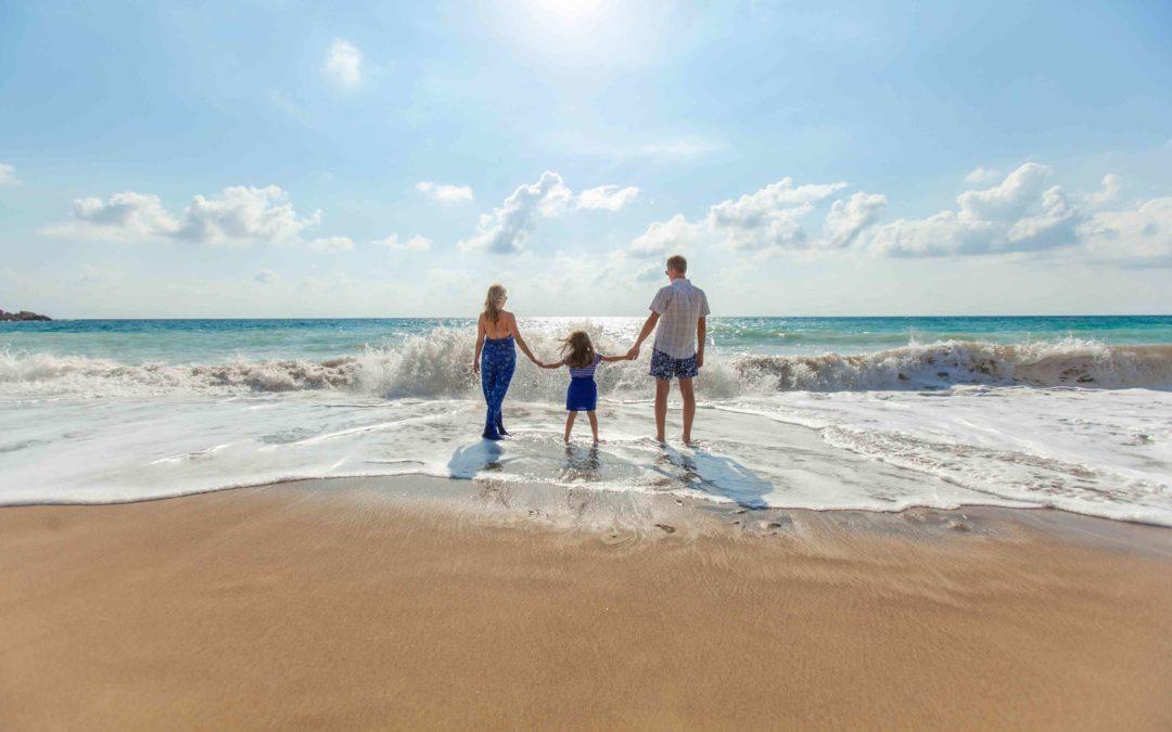 ¿Qué son los Subsistemas en la familia y cómo funcionan?